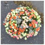 Букет из кустовых роз Colosso