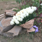 Букет из 75 роз Amore